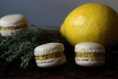 maca lemon curd thym 1